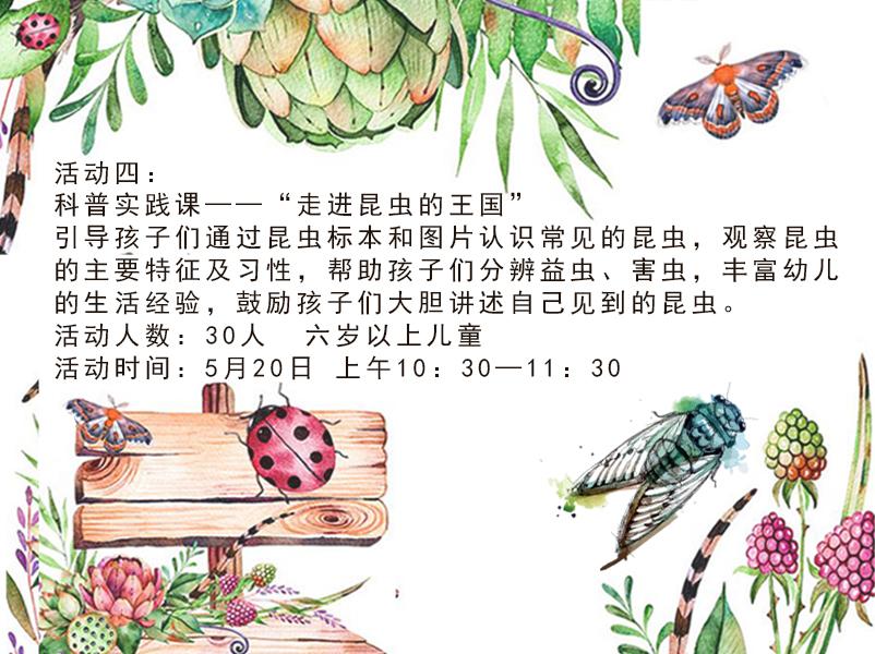"""""""走进昆虫的王国"""".jpg"""